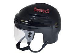 Arizona Coyotes Mini Helmet — Black