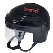 Arizona Coyotes Mini Helmet — Black